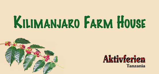 Im Kilimanjaro Farm House wird gepflanzt