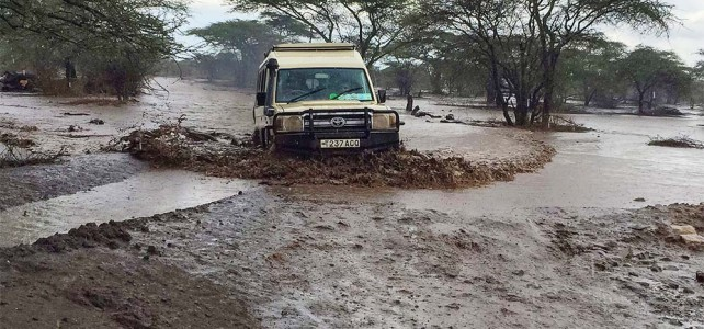 Tanzania Naturreise mit Dominik Abt