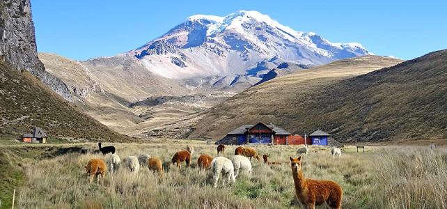 Der letzte Eisverkäufer am Chimborazo