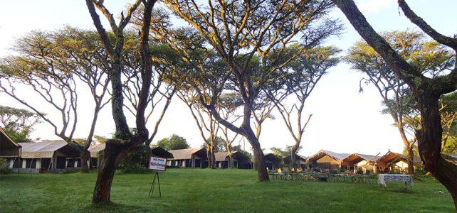 10 Jahre Ngorongoro Camp