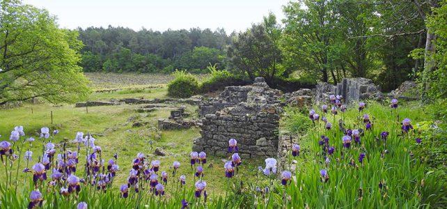 Le ruines de Monastier