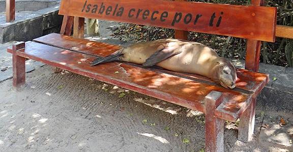 Trekkingtouren auf Galapagos
