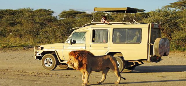 Fuss-Safari in der Serengeti, Tanzania
