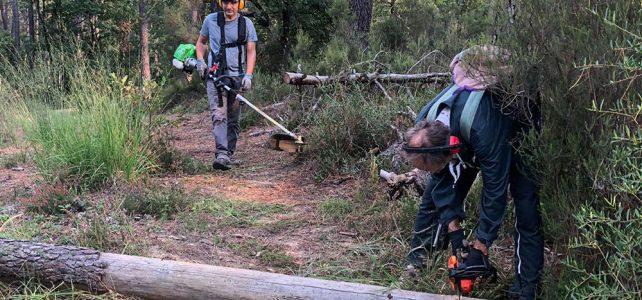 Trailbauwoche zum Saisonbeginn