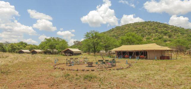 Neues Serengeti Aktivferien Camp eröffnet – Fuss-Safari in Tansania