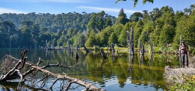 Reisebericht von Patagonien