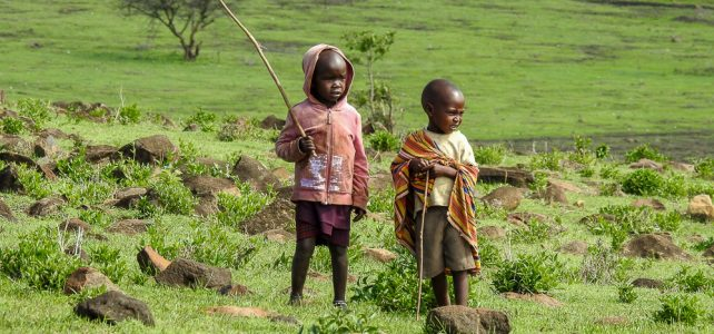 Tagebuch von Michael Scharenberg von der Tansania Naturreise